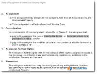 Assignment Intellectual Property Sample 2